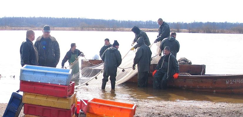 Vidaus vandenų žvejybos infrastruktūrai – parama