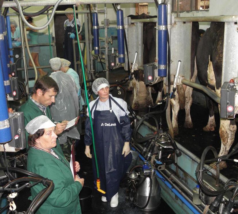 Pieno gamintojams – papildoma ES parama