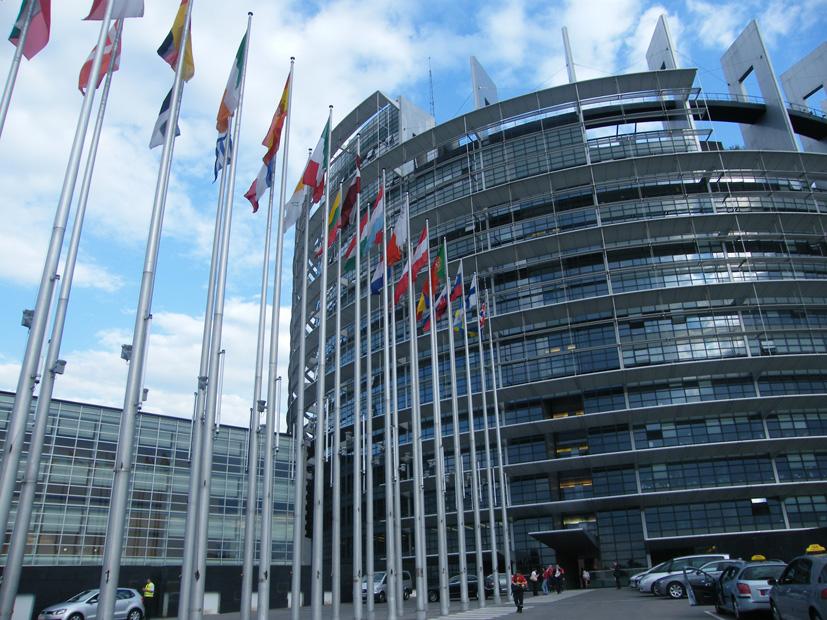 Europarlamentarai valstybės dienos nešventė