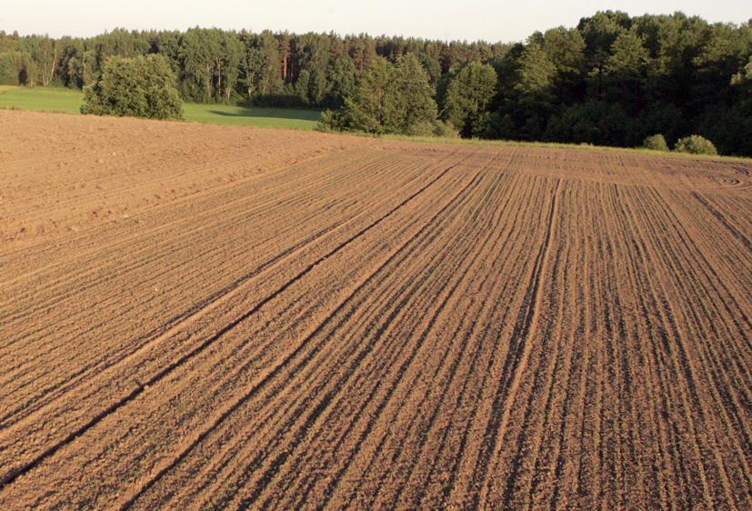 Ūkininkavimo naštą palengvina profesionalūs konsultantai