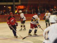 Ledo ritulio aikštelėje – atkaklios rungtynės