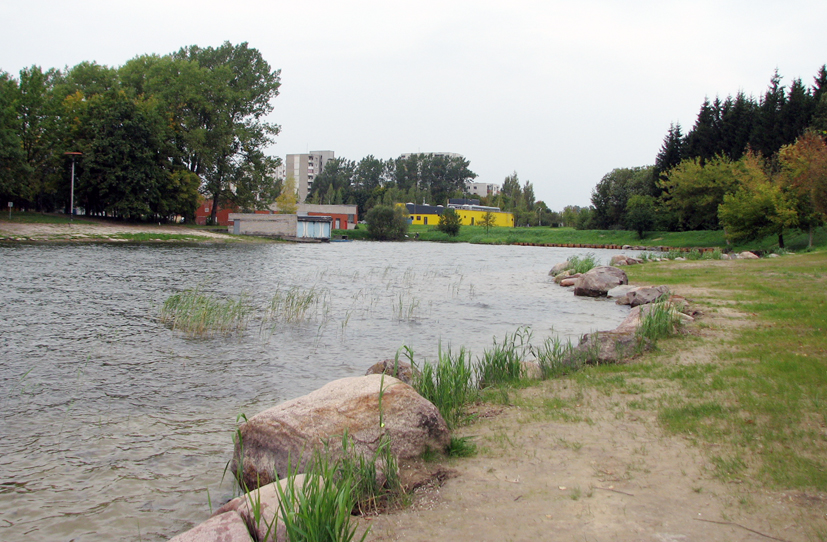 """Baigiamas projektas  """"Elektrėnų marių dalies, esančios šiaurinėje miesto dalyje, išvalymas"""""""