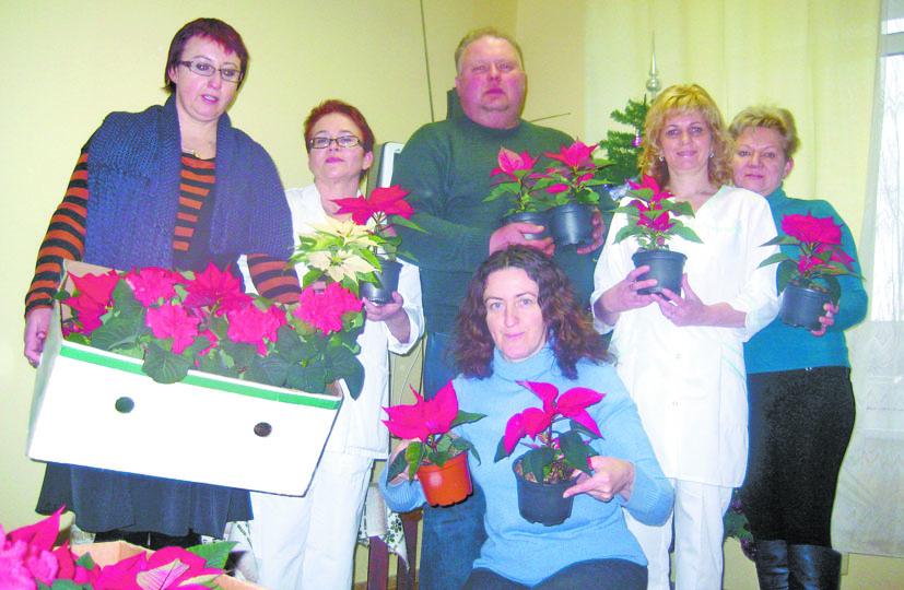 Ligoninė pražydo kalėdinėmis gėlėmis