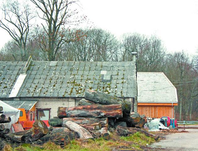 Kaimo namai be naujų stogų neliks