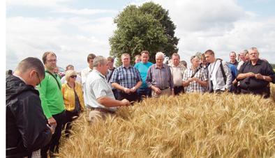 Žemdirbių vasara: geras derlius, aukštos kainos, brangi duona