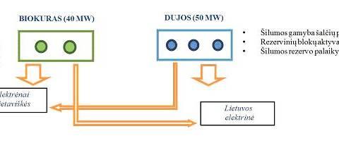 Elektrėnai bus apšildomi biokuru