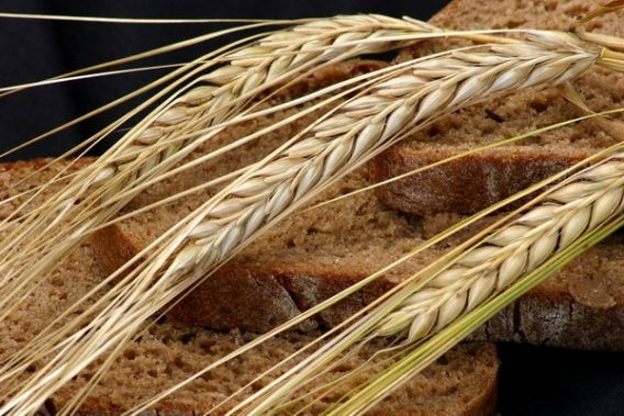 Tėvų duona