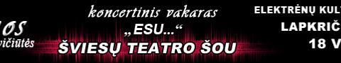 Irmos Jurgelevičiūtės koncertas