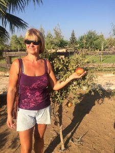 Algima Palaimienė Kipre surado geresnį klimatą ir geresnį gyvenimą