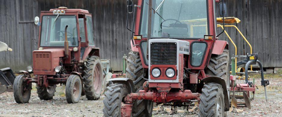 Parama smulkiesiems ūkiams – viena patraukliausių