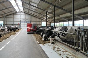 """Šiais metais įgyvendinant priemonę ypatingas dėmesys skiriamas pastatų statybai, ypač gyvulininkystės sektoriuje. """"Prisipažinsiu – dedu dideles viltis, kad ūkininkai statys karvių fermas"""", – sako ministras"""