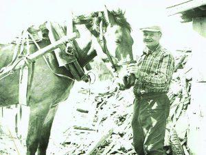 Jonas Sabonis, buvo ruoštas kare tarnauti su arkliais: nuo tada visą gyvenimą jis su arkliais turėjo tik jam suprantamą ryšį