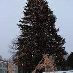 Elektrėnų eglutė – aukščiausia (19 m) šventėms puošiama eglutė Lietuvoje. Prieš pusšimtį metų ją pasodino moksleiviai