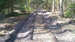 G. Stankaitis sako, kad dėl šiltėjančių žiemų miško keliukai tampa vis sunkiau pravažiuojami