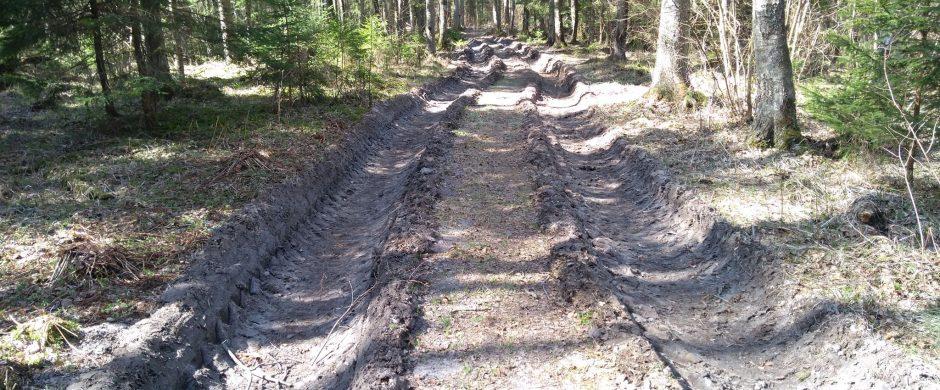 Parama skatina tvarkyti miško kelius