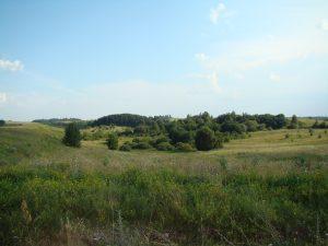 Baubonių kaimo laukai