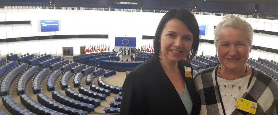 Karšta plenarinė sesija Strasbūre