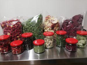 """MB """"Du Stos"""" šaltyje džiovina ne tik uogas, bet ir įvairius vaisius, daržoves ar prieskonines žoleles"""