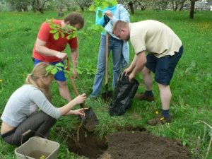 Su studentais išgyvenimo stovykloje sodinam ąžuoliuką