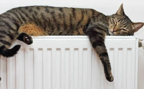 10 šilumos taupymo idėjų