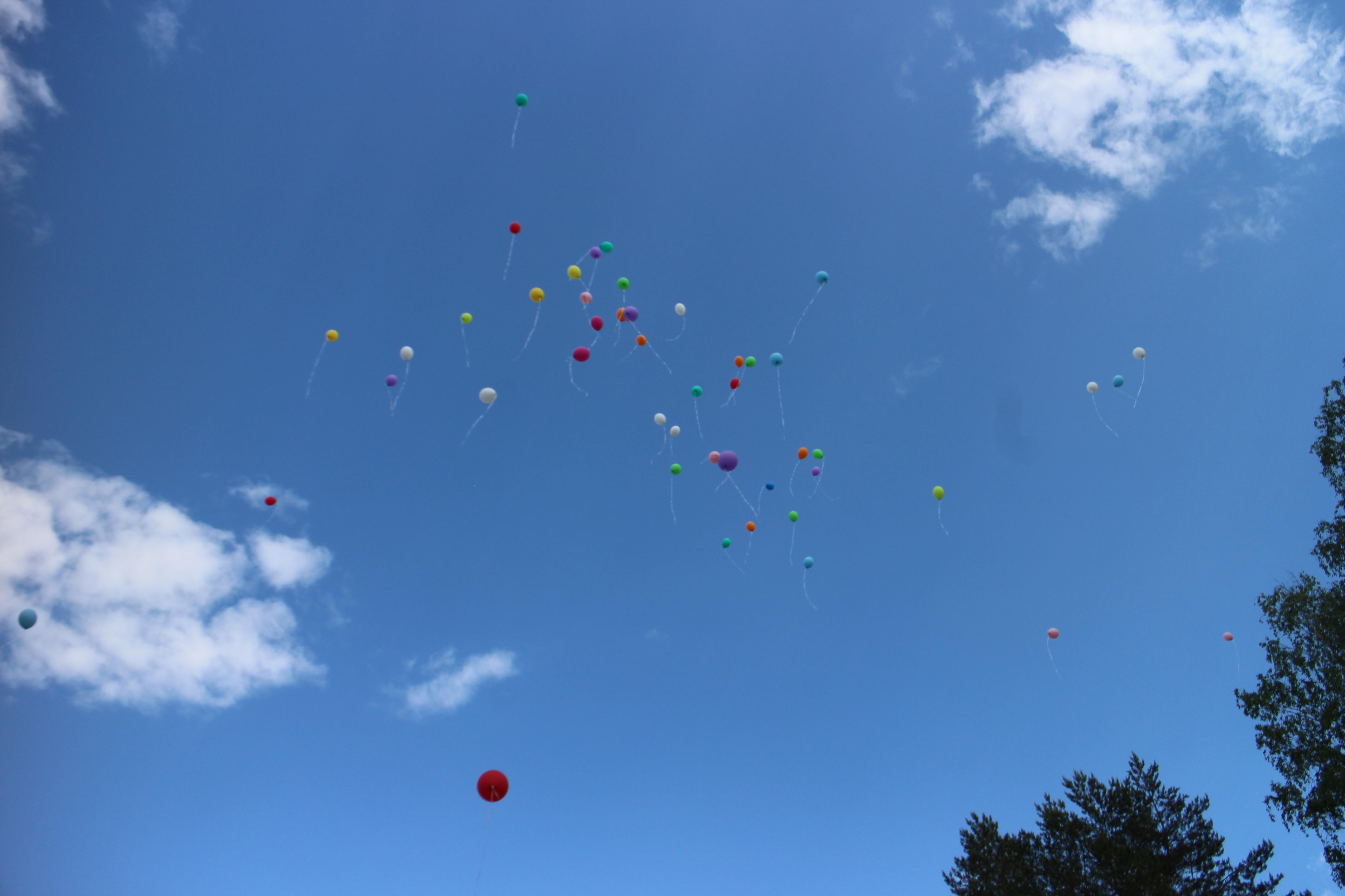 Visi į dangų paleisti balionai nusileidžia ir tampa šiukšlėmis