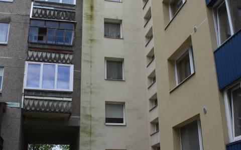 Žaliuojančius pastatus išgelbės tik šveitimas